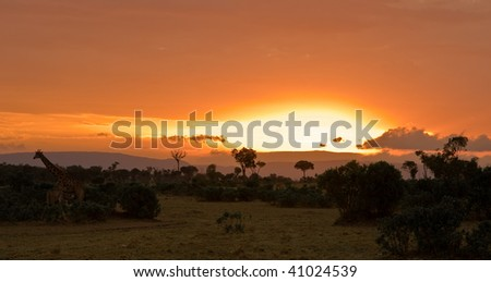 Fairy Tale Masai Mara - stock photo