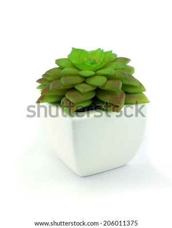 Fake flowers in the vase on white background