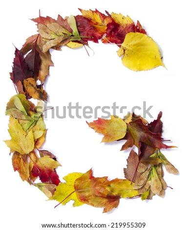 Fall alphabet letter G - stock photo