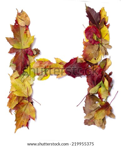 Fall alphabet letter H - stock photo