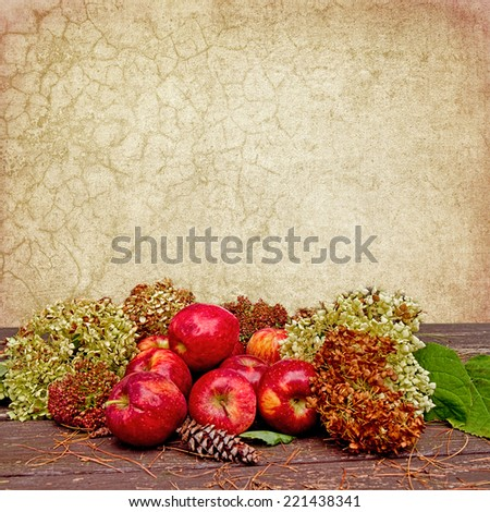 Fall apples sitting on table outdoors with dried hydrangeas and other fall plants laying beside them.  Crackled textured background for interest in this background. - stock photo