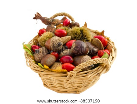 Fall arrangement in the basket