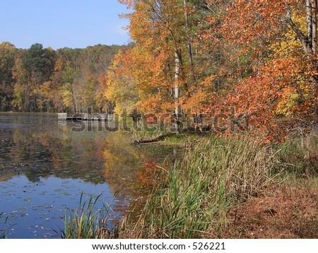 Fall at a Lake - stock photo