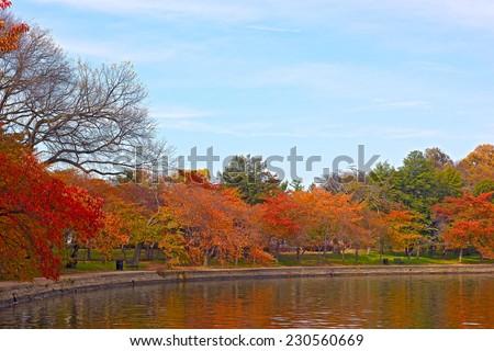 Fall at Tidal Basin, Washington DC. Trees along Tidal Basin waters in autumn foliage. - stock photo