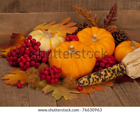 Fall Centerpiece of Dried Corn, Mini Pumpkins, Red Berries and Leaves in Rustic Barn, Wood Board Still Life