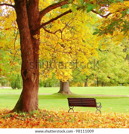 Fall city park - stock photo