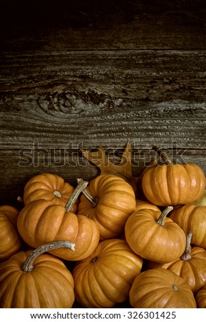 Fall Closeup of Pile of  Halloween, Thanksgiving mini Pumpkins Against Rustic Wood Board Wall Background and room or space for copy, text, your words. Vertical warm sepia still life, dark moody light - stock photo