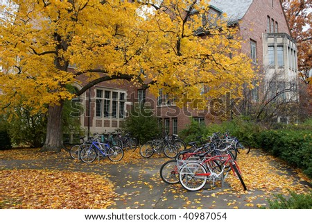 Fall College Campus. University student dorm with autumn leaves and bike racks. Horizontal format. - stock photo