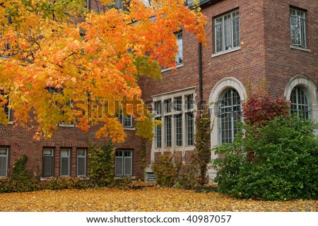 Fall College Campus. University student dorm with autumn leaves. Horizontal format.
