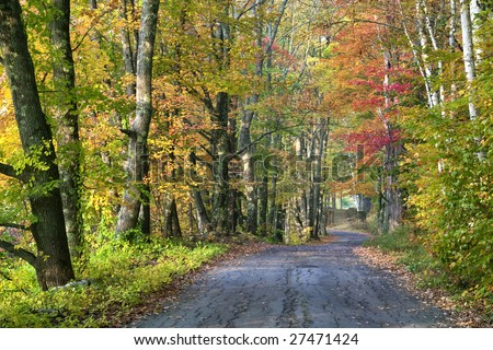 Fall color along road in New Hampshire - stock photo