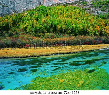 fall color in Tibet