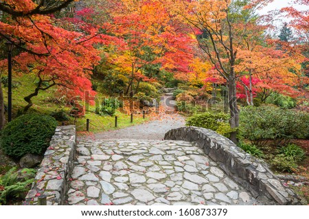 Fall Color Landscape with Stone Bridge and Winding Walking Path. Copy space. - stock photo