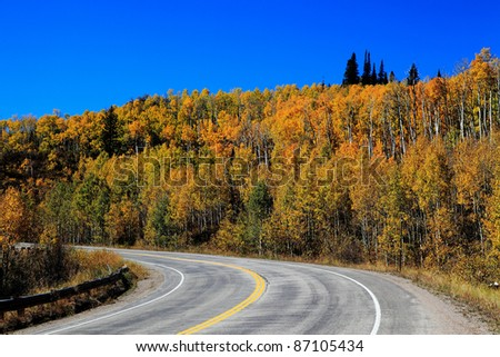 Fall Color north of Durango, CO - stock photo