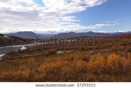 Fall color on Denali Highway