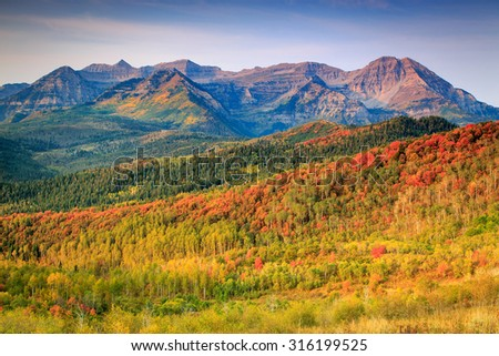 Fall color on the East Slope of Mount Timpanogos, Utah, USA. - stock photo