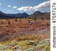 Fall-colored alpine tundra landscape in the Yukon Territory, Canada. - stock photo