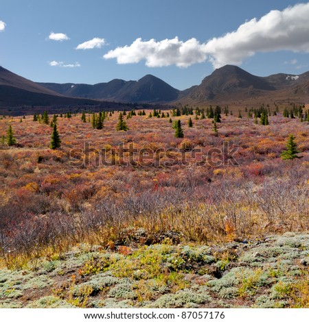 Fall-colored alpine tundra landscape in the Yukon Territory, Canada. - stock photo