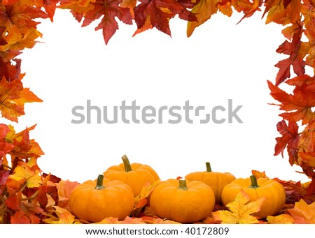 Fall colored leaves with a pumpkin isolated on a white background, Fall Leaves