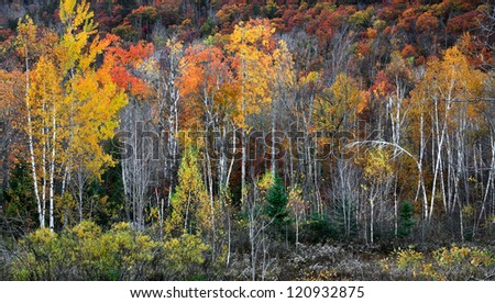 Fall Colors Adorn The Slopes And Foothills In The Adirondack Mountains Of New York State, USA - stock photo