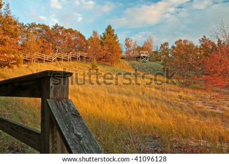 Fall colors and beach grass, Muskegon, MI, fall of 2009 - stock photo