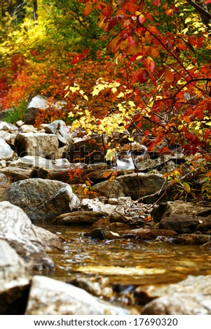 Fall Colors at a quiet stream - stock photo