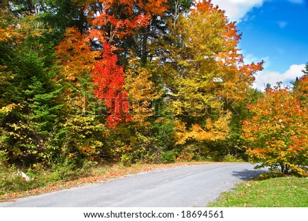 Fall colors in Canada's Algonquin Park - stock photo