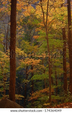 Fall Colors in Great Smoky Mountains National Park, North Carolina, USA - stock photo