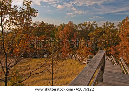 Fall colors in Michigan - stock photo