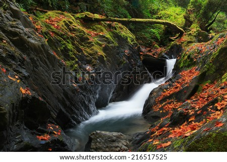 Fall colors in the mountains, view from the Taiwan. - stock photo