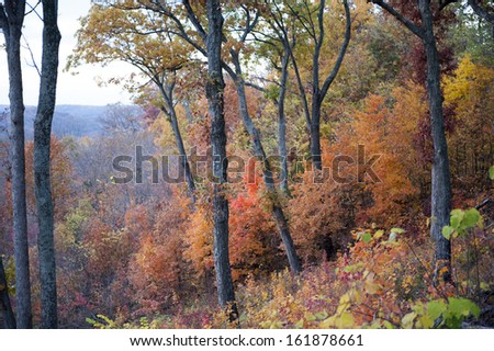 Fall Colors in the trees on a hill looking down into a valley below - stock photo