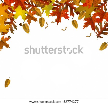 fall colors leaves illustration background