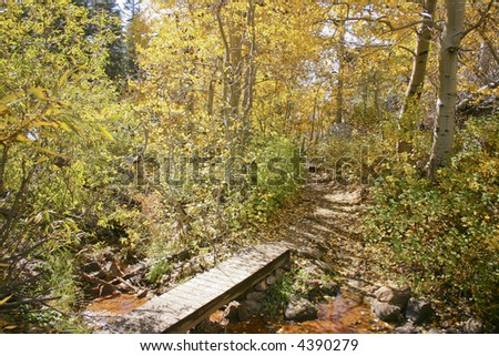 Fall colors near Marlette Lake, hiking on the Flume Trail - stock photo