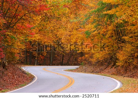 Fall colors on road over Fort Mountain Georgia - stock photo