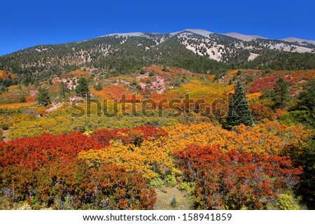 Fall colors on Rocky mountains - stock photo
