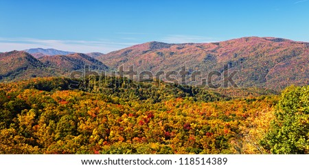 Fall colors woods in the Smoky Mountains National Park, Tennessee, USA - stock photo