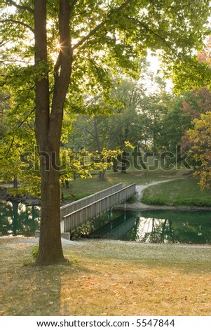 Fall day overlooking a pond and a bridge with the sun sparkling through the leaves