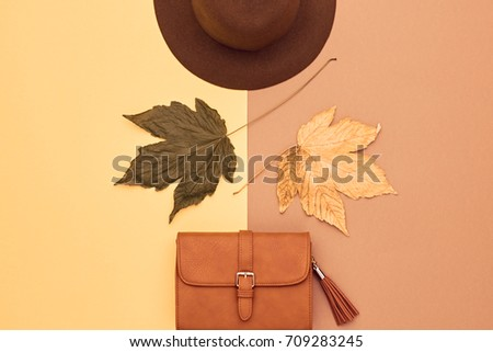 Fall Fashion Glamour Lady Look.Trendy Handbag Clutch. Fashion Stylish Glamour. Flat lay. Fall Leaves. Autumn Minimal. Vanilla Pastel colors. Vintage