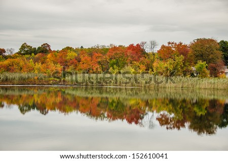 Fall Foliage along a Pond on a Cloudy Day - stock photo
