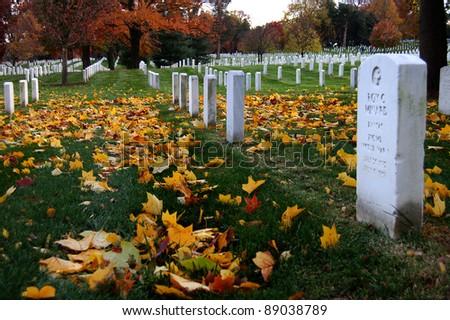Fall foliage at Arlington National Cemetery in Virginia - stock photo