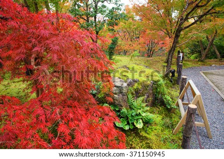 Fall foliage garden at Eikando Temple in Kyoto, Japan - stock photo