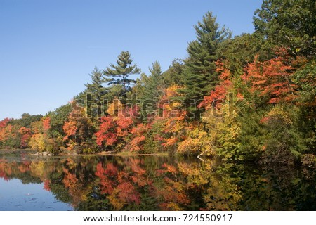 Fall Foliage, Massachusetts in Harold Parker State Park. Andover MA