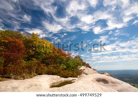 Fall foliage with a blue sky and white clouds.