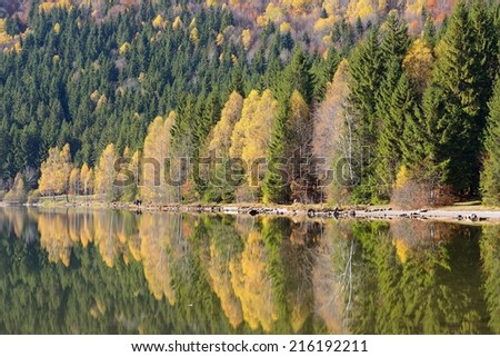 Fall forest reflections in lake water