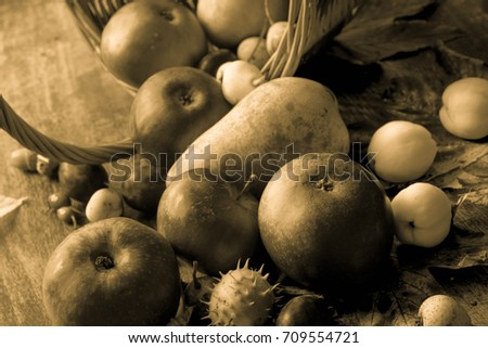 fall  fruits on table  still life closeup