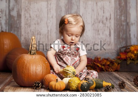 Fall Fun!  Adorable baby girl surrounded by pumpkins and gourds and other fall decor in the background.