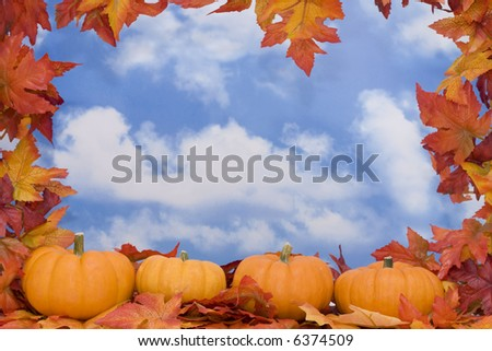 Fall Harvest border with sky background