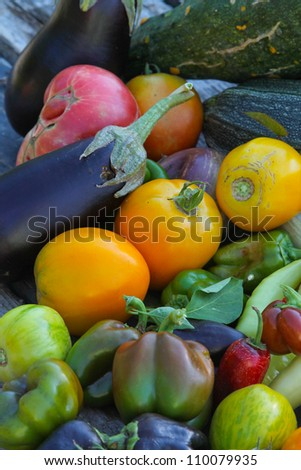 Fall Harvest Color - vertical orientation of fall vegetable harvest with many colors - stock photo