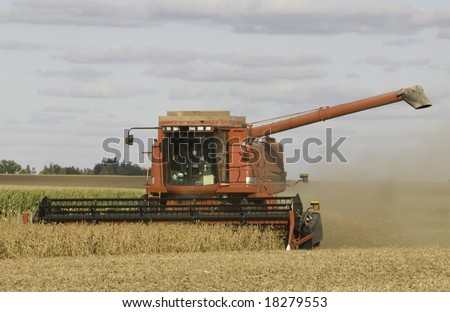 Fall Harvest: Combining soybeans.