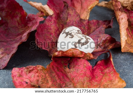 fall heart decoratives stone heart on the sidewalk with fall leaves and german word dream - stock photo