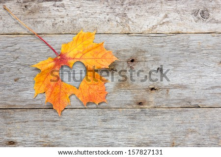 Fall in love photo metaphor. Maple leaf with heart shape on the wooden background - stock photo